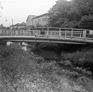 Bridges of the Ochiai River