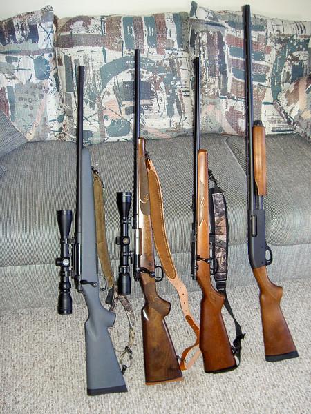 gun-17