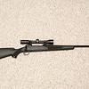 gun-20
