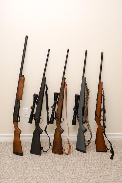 gun-12