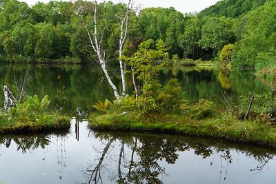 Kido Pond, Shiga Kogen