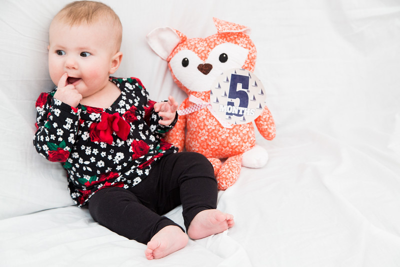 Taylor_Lynn_Five_Month_Old_00101