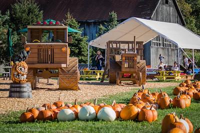 Meadowview Farms 2017