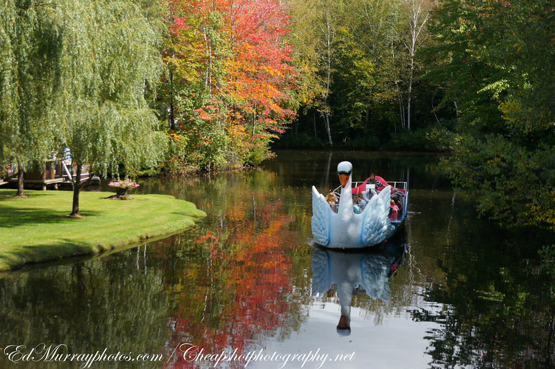 Giant Swan Boat