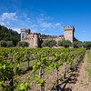 Castello and Vineyards, 10th Anniversary (Alison Cochrane Hernandez)