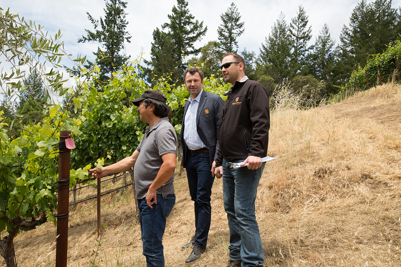 Vineyard Consultant Martin Mochizuki (left), Castello President Georg Salzner (center), and Winemaker Peter Velleno (right) inspect the vines at Morning Dew Ranch.
