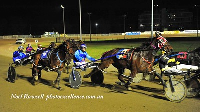 Driver Todd McCarthy driving PACKNPLENTY (#4) at Penrith Paceway in June, 2019 Nepean News 18th July, 2019
