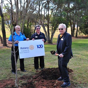 Rotary Presidents Nick Marathakis (Nepean), Jean Vranich (Penrith Valley) & Willy Piepers (Penrith) at the tree planting ceremony. Nepean News 28th May, 2021