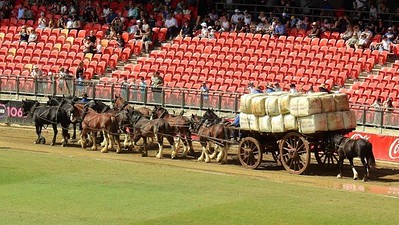 The Heavy Horse Supply Wagon. One of the 10 images from the 2021 Royal Easter Show Montage Nepean News 16th April, 2021