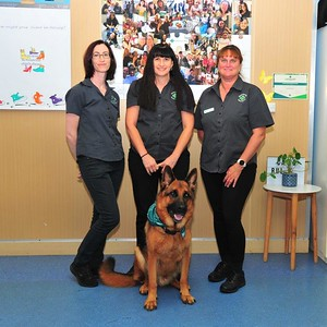 Dr Erin Short, Kellie Tickner, Dr Sandy Gale. Greencross Vets are celebrating 25 years of operation. Nepean News 19th February, 2021
