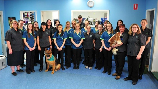 Staff at Greencross Veterinary Surgery in new uniforms Nepean News 2nd August, 2018