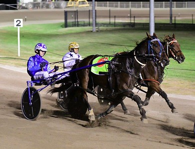 Concession Harness Racing Driver Seaton Grima (#6) drove his first treble of winners on 22nd April, 2021 Nepean News - Digital Edition 7th May, 2021