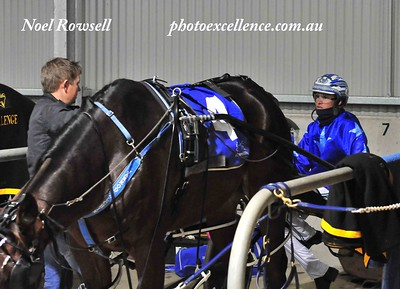 Trainer Jarrod Alchin and driver Todd McCarthy discuss tactics prior to a race at Penrith Paceway in June, 2019. Nepean News 18th July, 2019