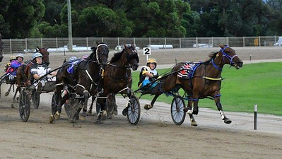 Stephanie Lippiatt leads My Petronus NZ into the straight at Penrith Paceway on 18th February, 2021 Nepean News 26th February, 2021