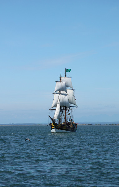 Lady Washington under sail. Photo by Ron Arel, Coastal Images.