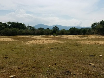 This land in Ahuachapán, El Salvador, can become the site for 80 new Fuller Center homes.