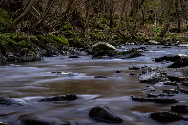 , SCOTLAND - January 19:       (Photo by Rob Gray / Freelance)