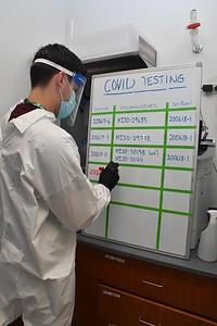 Jackson Laboratory - Covid Testing Lab