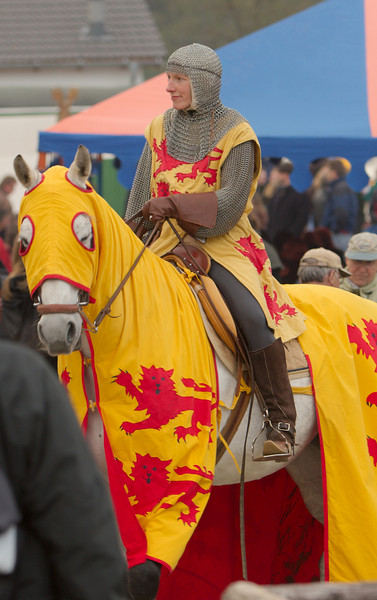 Visiting the crowds, this fighting lady rides carefully through the masses.  I think the horse blinked at me ...