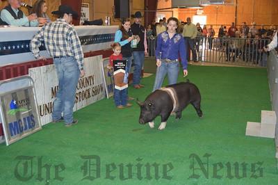 Medina Co Jr Livestock Sh 2017