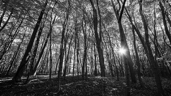 Breaking Light, Princess Ledges County Park, 2015.