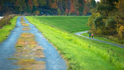 Morning Run, Lake Medina County Park, 2015.