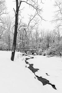 Roscoe Ewing Park, February 17, 2016.