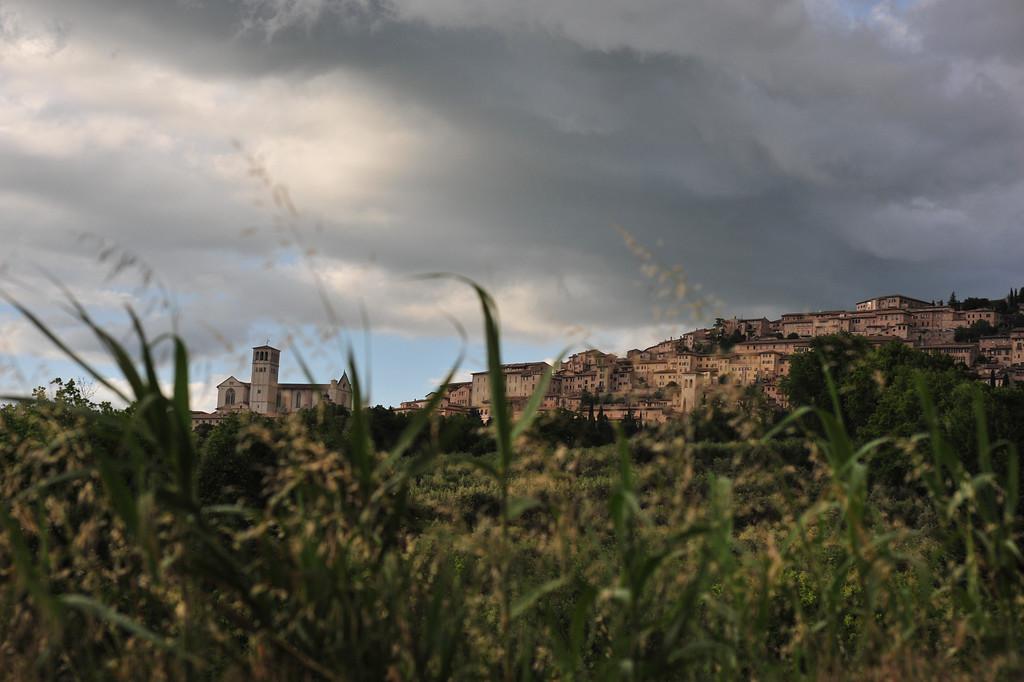 Blick auf die Basilica die San Francesco