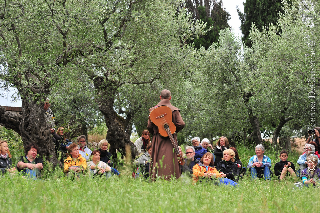 Olivenhaine bei San Damiano