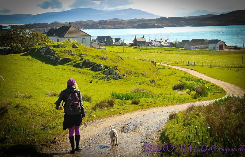 Walking the sheep