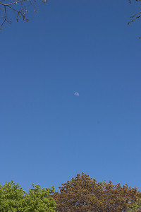Moon and Blue Sky