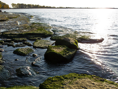 Lake Ontario Shoreline, Wellington