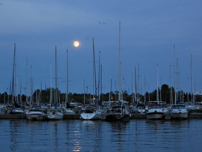 Moonrise over the Marina