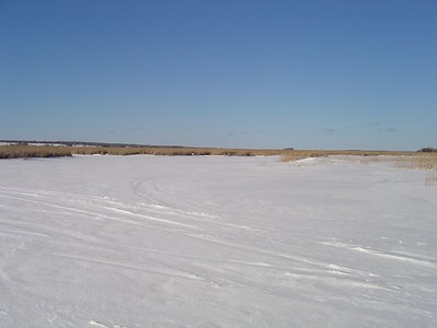 Frozen Lake -- Pigeon Lake ON