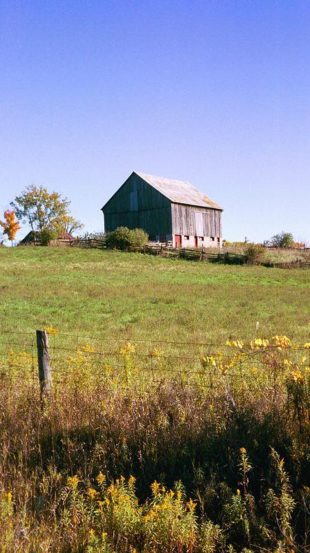 Fall Barn -- Bridgenorth ON (APS Film Scan)