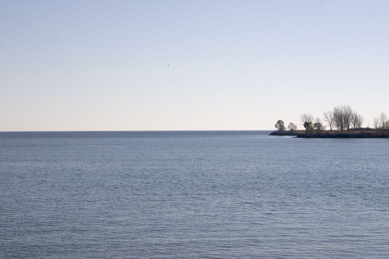 Lake and Trees -- Toronto