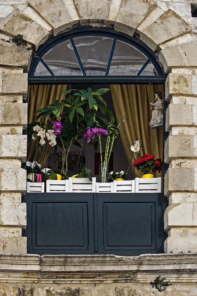 Orchids-and-angel-in-old-house,-Dubrovnik,-Croatia