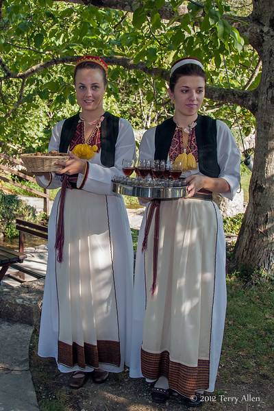 Welcome-ceremony,-Konvale-region-mill,-Croatia
