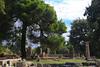 Olympia - Looking toward Temple of Hera