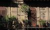 Palermo - Balcony Garden