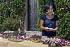 Grapes-&-cannoli,-Feudo-di-Principo-Butera-Winery,-Caltnisetta,-Sicily