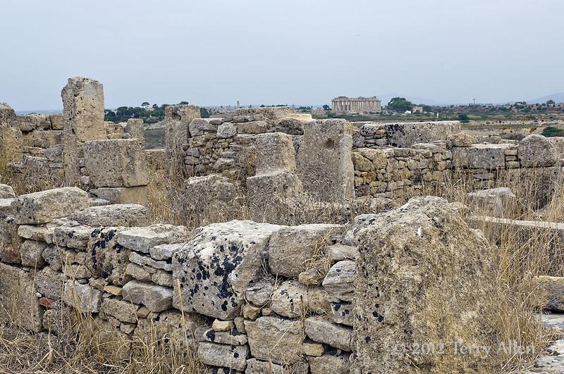 Acropolis-ruins-looking-towards-Temple-E,-Selinute,-Sicily