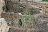 Overgrown-ruins-at-the-Acropolis,-Selinute,-Sicilia