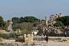 Temples-of-Hera,-Concord,-Heracles-&-Zeus-(with-telemon),-Agrigento,-Sicily