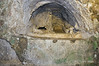 Catacombe-di-San-Giovanni-(early-Christian-symbols),-Siracuse,-Sicily