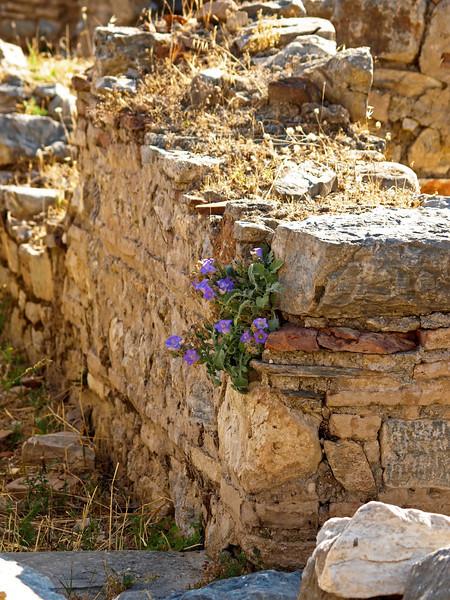 Ancient Roman ruins in Ephesus, Turkey.