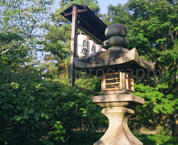 """Lantern in morning light""<br /> Mamiya RB67 - 90mm f/3.8 Lens - Fujicolor Reala ""ACE"" 100"