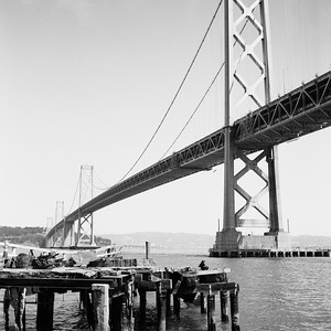 Bridge - SF