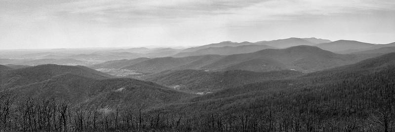 Shenandoah National Park, April 2017, RZ67, Tri-X film, home processed.