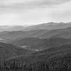 Shenandoah National Park, April 2017, RZ67, Tri-X film, home processed.